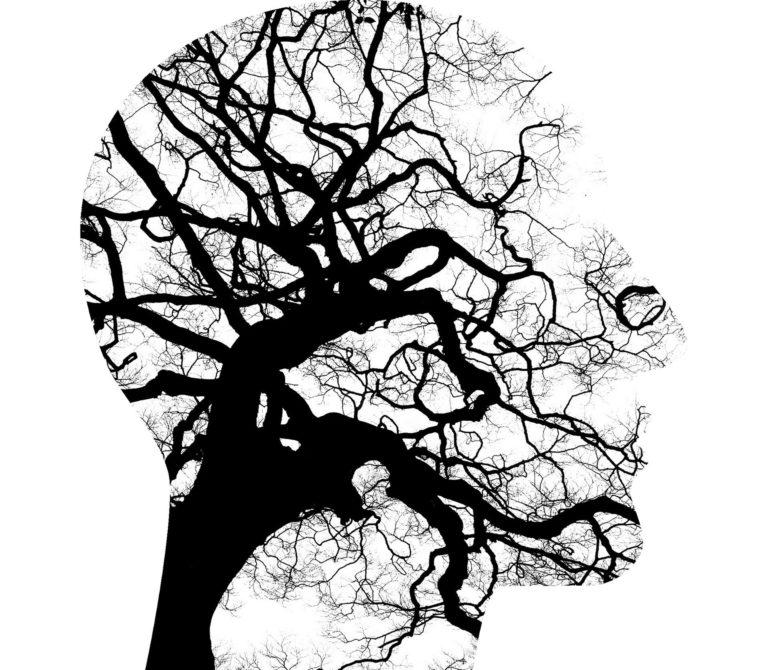 Kursus for psykologer – UDSAT til efteråret
